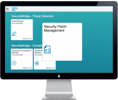 Security Patch Management for SAP